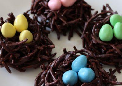 ChocolateBirdNest