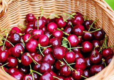 cherries-1453333_1920