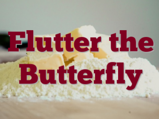 Flutter the Butterfly